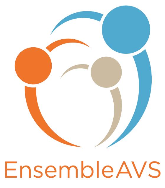 EnsembleAVS